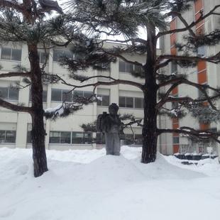 相模小学校の金ちゃんは、雪の中でも勤勉その...